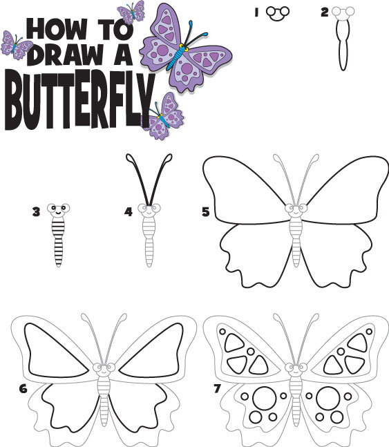 How To Draw A Butterfly Kid Scoop